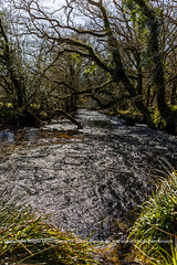 The River Fowey.   Golitha Fall National Nature Reserve (doublejeopardy) Tags: england cornwall unitedkingdom naturereserve gb liskeard riverfowey golithafalls