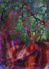 WinterWood (flynryon) Tags: tree art texture mike mobile digital portraits landscapes flickr artist award canvas glaze adobe kansas shape figures impressionist fingerpaint ryon iphone artstudio scumble mashablecom fingerpaintedit flynryon iamda netartii ipainter beesparkt paintbookca beesflite beesparkt:week=63