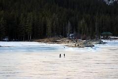 Banff, Lake Minnewanka, Feb 20, 2016 (4) (Velates) Tags: park winter lake canada mountains national valley bow banff lakeminnewanka