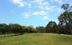 Lot 26 Palm Grove Place, Moonee Beach NSW