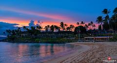 Napili Kai (Thncher Photography) Tags: sunset sky beach nature clouds reflections landscape outdoors island hawaii sand sony scenic maui palmtrees pacificocean tropical kapalua fullframe fx lahaina waterscape kaanapali kahana napili napilibay a7r sonya7r ilce7r zeissfe1635mmf4zaoss