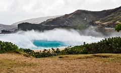 Sandy Beach Bombing 03/08/16 (Run amuck) Tags: beach surf waves oahu sandybeach surfphotography fishscalephoto