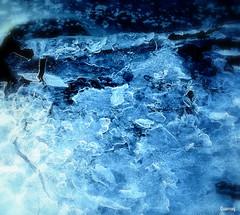 Qaannuq. (Papa Razzi1) Tags: sea ice march stuck sweden salt shore 2016 6826 72365 wermd qaannuq
