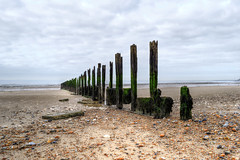 Old groyne, Minnis Bay, Kent (Aliy) Tags: wood sea beach coast kent seaside sand rocks pebbles groyne oldwood breakwater woodenstructure thanet birchington minnisbay oldtimbers oldtimber