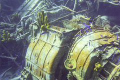 DSC05978 (Andreuha) Tags: scuba wreckdiving shipwreck keithtibbetts koniclassfrigate 356 caymanbrac