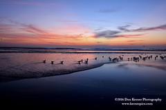Sunrise_1032916 (Krnr Pics) Tags: beach sunrise florida crescentbeach staugustine krnrpics kernerpics