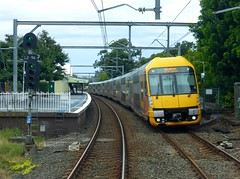 Stanmore (ajat18) Tags: electric commuter waratah newtown petersham electrictrain aset stanmore doubledeck sydneytrains