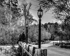 Bridge Light Poles (that_damn_duck) Tags: bridge bw blackwhite unitedstates southcarolina lightpoles