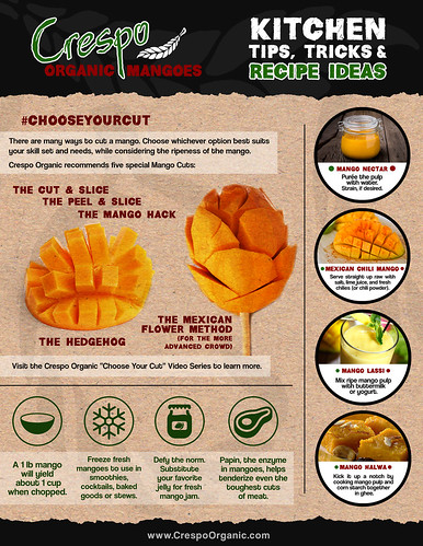 "Crespo_Kitchen_ideas_inforgraphic • <a style=""font-size:0.8em;"" href=""http://www.flickr.com/photos/139081453@N03/26169143345/"" target=""_blank"">View on Flickr</a>"