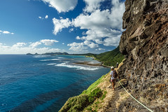 Traversing the ledge on Lord Howe Island (NettyA) Tags: people cliff track australia rope hike ledge nsw day6 bushwalk narrow unescoworldheritage steep lordhoweisland 2016 lhi traversing mtgower mtlidgbird janetteasche lordhoweforclimate mtgowerclimb