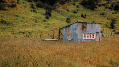 Casita abandonada (gus926gl) Tags: city travel viaje patagonia house color abandoned home argentina canon ushuaia casa holidays sigma ciudad campo desolate vacaciones choza hogar abandono t3i 17mm