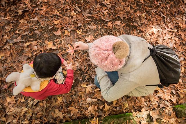 戶外親子攝影,全家福攝影推薦,兒童親子寫真,兒童攝影,南投清境攝影,紅帽子工作室,婚攝紅帽子,清境小瑞士攝影,清境農場親子,清境農場攝影,親子寫真,親子攝影,familyportraits,Redcap-Studio-61