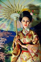 Geisha  (Kim ) Tags: cherry japanese tokyo miniature blossoms geiko geisha kimono comb memoirs kasa  kanzashi kushi sybarite   geigi fiday birabira kimlondon