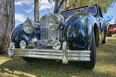 1947 Triumph 1800 Roadster (dmentd) Tags: triumph 1800 1947 roadster