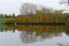 Herbst am Teich 21 (lady_sunshine_photos) Tags: austria europa herbst teich niedersterreich bootshaus oase weinviertel herbstfrbung nexing