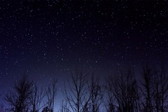 Starry Night (Helen Qin) Tags: longexposure nightphotography blue summer sky canada color colour night dark stars star darkness purple indigo twinkle nightime starry nikond5200