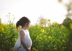 Flower field (mrsbermudez1) Tags: flowers girl beautiful beauty model child cutie granddaughter flowerfield