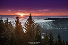 Hornisgrinde - Schwarzwald (Dennis Kirstein) Tags: sunrise landscape landschaft schwarzwald blackforest hornisgrinde