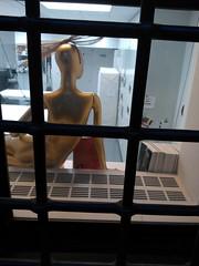 The Golden Model (failing_angel) Tags: usa newyork manhattan 5thavenue metropolitanmuseumofart 290515