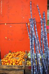 Oranges_and_Sugarcane_2015_ Melissa Donaghue-2972 (daisyvisionxxx) Tags: china food orange fruit asia december purple pentax oranges hebei  ricoh sugarcane peoplesrepublicofchina 2015  tangshan    hebeiprovince  tangshancity pentaxk50 melissadonaghue 12102015