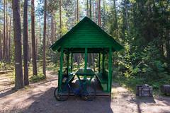 Mein Velo (W***) Tags: by nationalpark strasse bank belarus wald velo fahrrad weissrussland unescowelterbe brestregion weisrussland