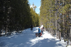 Daddy and the kids snowshoeing (Aggiewelshes) Tags: travel winter snow april snowshoeing adrian wyoming olsen jacksonhole colterbay jovie grandtetonnationalpark 2016 gtnp
