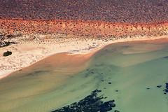Shark Bay - 5304