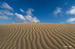 Al final de la duna (adrivallekas) Tags: sky cloud beach lines grancanaria rock contrast canon island sand canarias arena cielo nubes canaryislands isla dunas islascanarias piedra maspalomas maspalomasbeach canoneos6d