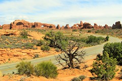 North Window and Turret Arches from Viewpoint (Patricia Henschen) Tags: clouds utah moab archesnationalpark turretarch northwindowarch