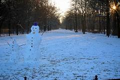 0534 (spunior) Tags: morning berlin snowman snowmen tiergarten