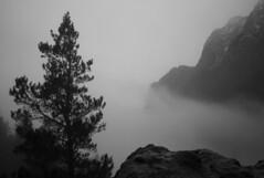 misty peak (intheclearkid) Tags: leica shadow mountain rain digital dark darkness pacific northwest hiking 28mm summicron pacificnorthwest wa washingtonstate grainisgood pnw vignette straightfromcamera leicam