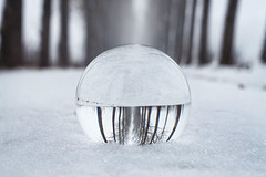 O (In Digo Fotografie) Tags: street schnee trees winter snow cold ice glass freezing freeze bubble kalt eis bume glas alle kugel allee alee c freezed gefrohren indigophotography indigophotographybyandreaswolfram