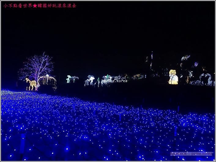 晨靜樹木園 五色星光庭園展 (12).JPG