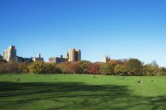 Central Park - Sheep Meadow (carlos_seo) Tags: usa newyork us unitedstates centralpark sheepmeadow
