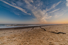 Derelict Branch (kevbphotography) Tags: uk sea orange beach water reflections coast suffolk sand colours tide east coastal sunet anglia covehithe