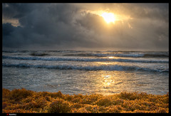 DSC_2778-Padre Sunrise (trinrn7) Tags: beach water sunrise padreisland