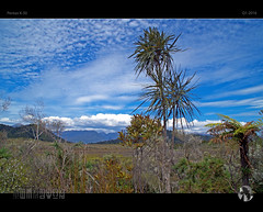 Walking The Wildness (tomraven) Tags: trees newzealand sky sun mountains clouds walking bush pentax wilderness westcoast paparoa k50 tomraven aravenimage q12016