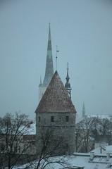 Kui Tallinnas sajab lund ... (anuwintschalek) Tags: schnee winter snow tallinn estonia january spire snowfall lumi altstadt oldtown eesti estland talv vanalinn toompea 2016 kirchturm schneefall oleviste patkuli d7k lumesadu kirikutorn nikond7000 churchtowe 18140vr