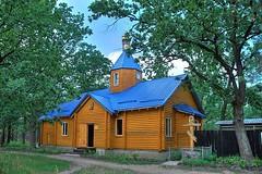 Храм Владимирской иконы Божией Матери (на Виноградаре)