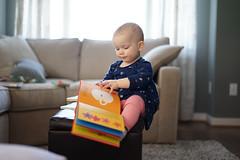 January 2016 Sony A7 Test Shots-20 (Amato Photography) Tags: baby sony richmond 16 months shire a7 rva ashby 2016 ashbyrva babyashby