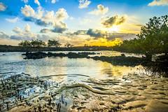 Early Morning - Barra de Tabatinga, Natal (rqserra) Tags: morning brazil sol praia beach brasil strand landscape dawn agua alba playa paisagem amanecer aurora nuvens plage amanhecer aube swit alvorecer morgendmmerung dageraad daggry gryning paccbet rqserra