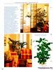 Комнатные и садовые растения от А до Я 55 15