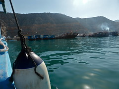 From the Dhow Boat (_ang.) Tags: boat oman dhow khasab