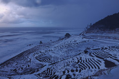 (HANAZONO) Tags: winter snow heritage japan landscape rice terraces noto systems peninsula important agricultural globally giahs