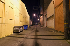 Eureka Alley (Curtis Gregory Perry) Tags: california longexposure yellow night trash dumpster garbage alley nikon garage eureka d800e