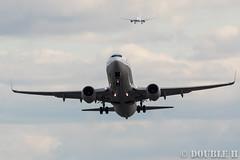 Itami Airport 2016.1.22 (6) JA66AN / ANA's B737-800 (double-h) Tags: airplane ana b737 itamiairport  itm osakaairport b737800   rjoo   inagawa thebankofinagawariver extenderef2xiii ef300mmf28lisiiusm ja66an eos7dmarkii