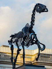 The Gift Horse Sculpture at Trafalgar Square (Olympus OMD EM5II & mZuiko 75mm F1.8 Prime) (markdbaynham) Tags: city urban london westminster square prime capital trafalgar evil olympus metropolis f18 omd csc oly mz 75mm londoner londonist m43 zd mft mirrorless micro43 microfourthirds micro43rd mzuiko m43rd em5ii zuikolic