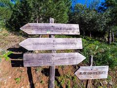 YDXJ1048 (Mancusomancuso) Tags: mountain sicily monte sicilia bagheria escursione catalfano