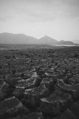 Dry. (Melissa Kumaresan) Tags: travel portrait mountains canon dry ground reservoir explore soil srilanka cracks wander kandalama dambulla sigiriya massivedork tumblr vsco canon600d kandalamareservoir vscocam