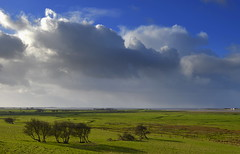 Wild stormy Lancashire landscape (Tony Worrall Foto) Tags: county uk trees wild england green nature grass weather clouds landscape outdoors stream tour open place natural northwest unitedkingdom farm country north scenic stormy visit scene location lancashire rainy area greenery lovely northern distance update attraction lancs welovethenorth